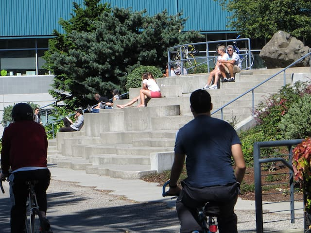 Ride a bike on the Burke Gilman trail.