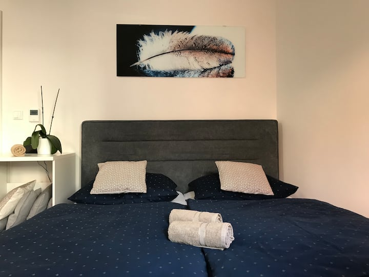 Apartment Brno centrum with private parking