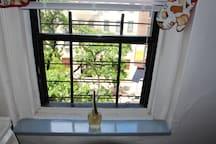 Clean Cozy Kitchen Window