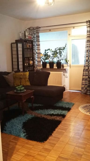 Large bright living room with cozy and large bright windows and you can see the balcony door
