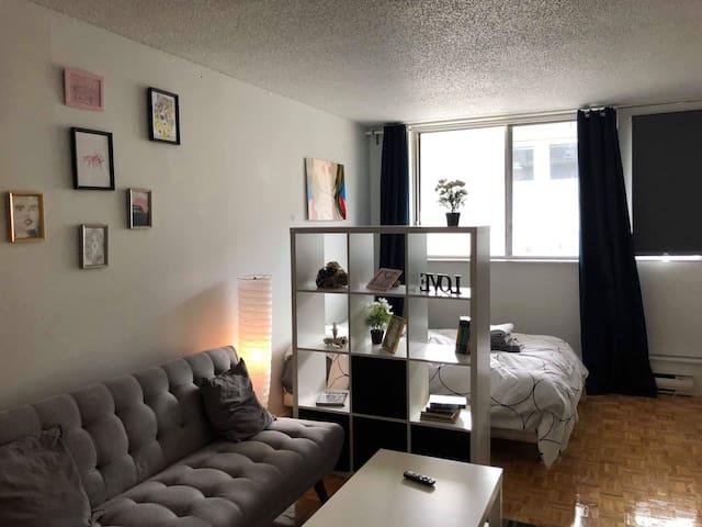 Cozy studio - Parc LaFontaine + INDOOR PARKING