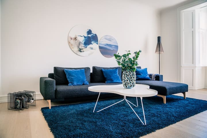 Marvellous Designer Apartment In The Heart Of CPH