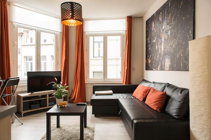 Classy flat @ center Antwerp+WiFi! - Antwerpen - Apartment
