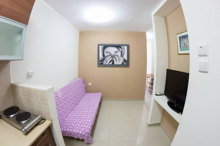 Great 1-bedroom apartment (018)