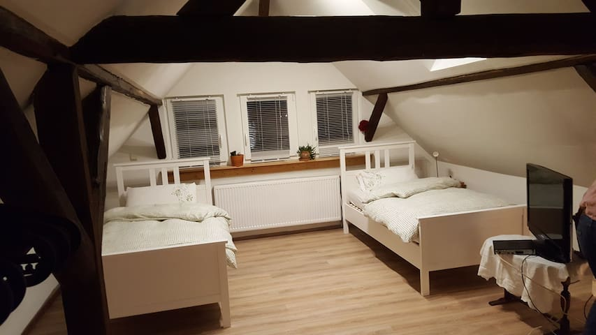 two single beds with TV
