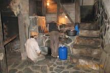olijvenpers in Cabreira