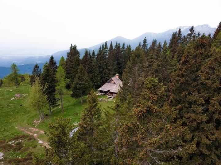Chalet Pinja - Velika Planina