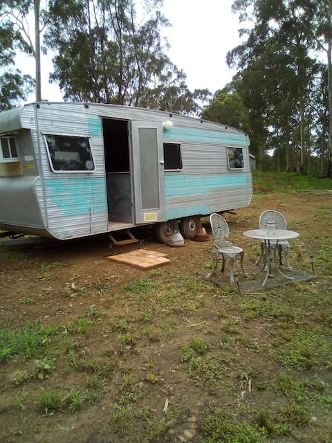 Ray & Traci's Eco-Glam Camping in a Caravan #1