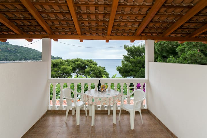 Franka - Twin room with terrace for 2; WI FI