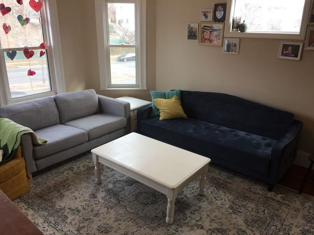 The living room with the new couches. The blue couch folds down into a sleeper sofa.