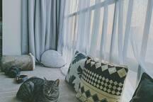 飘窗上能看到的落日和刘全有