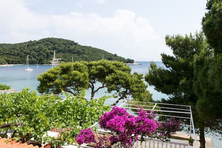 Onebedroom apartment, terrace,view - Saplunara