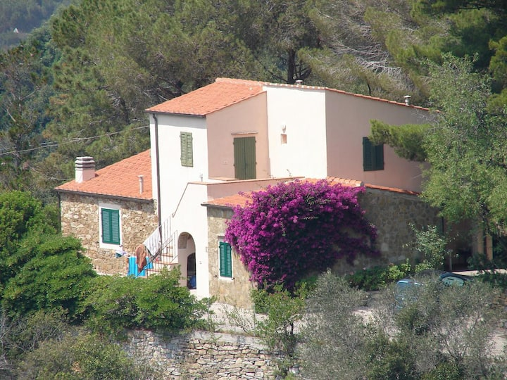 Wonderful villa with panoramic view