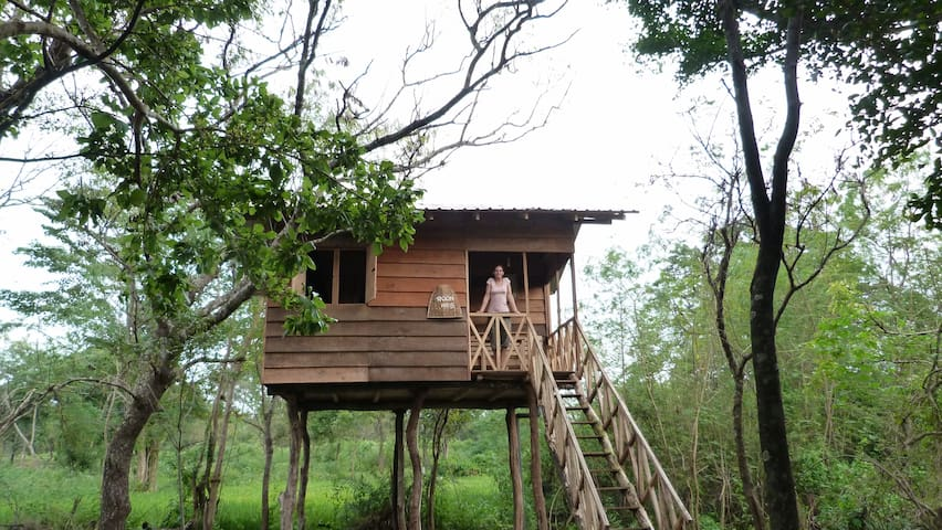 Treehouse Sigiri Queens Rest - Sigiriya