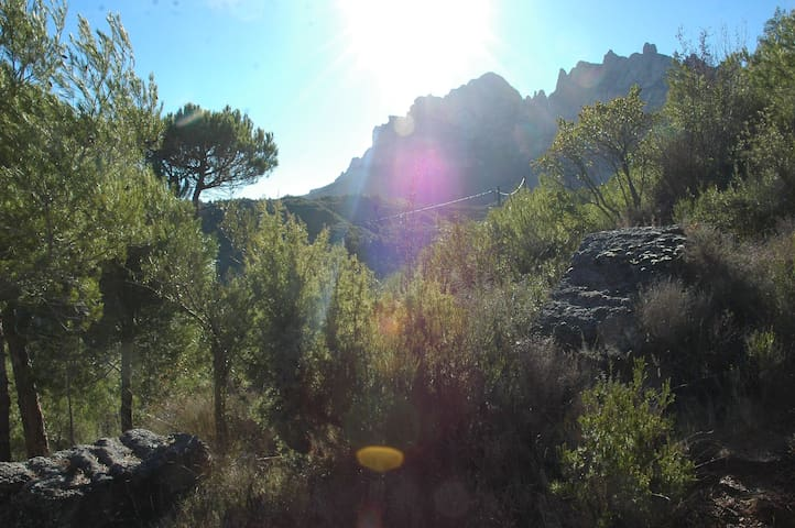 Climbers Cabin / Cabaña