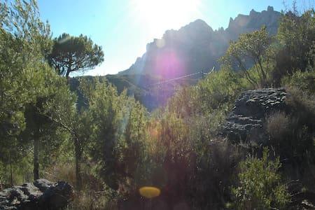Climbers Cabin / Cabaña - Barcelona