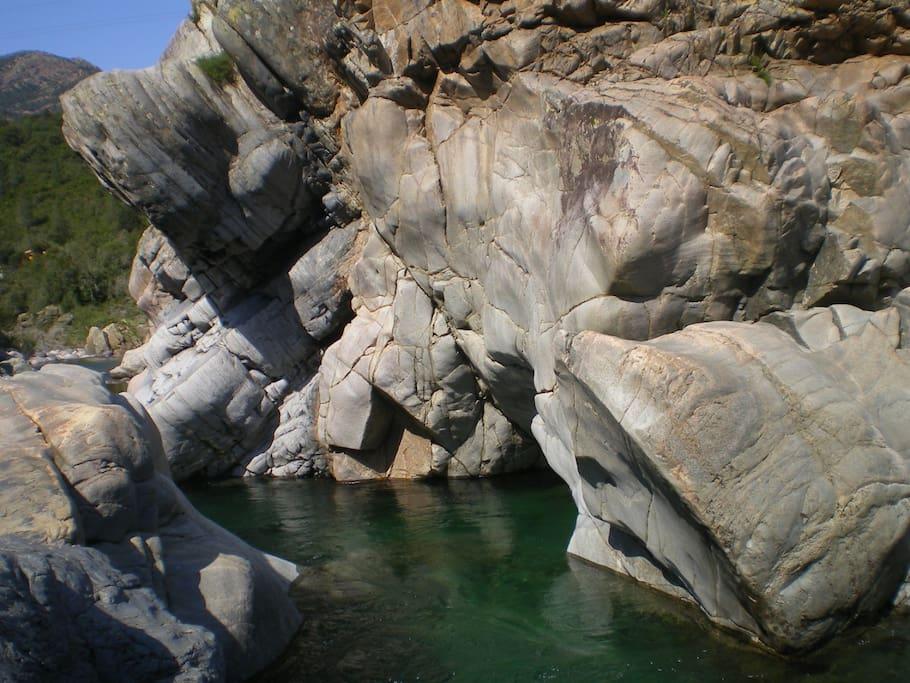 La rivière Fango: le pied de l'éléphant/Fango river: the foot of the elephant