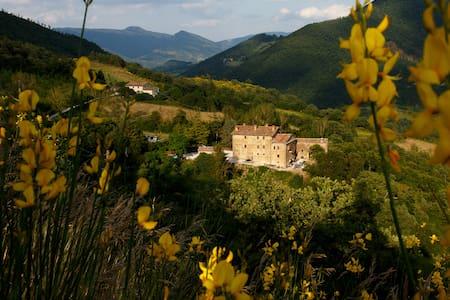 Splendida Villa che risale al 1550 - Pietralunga - B&B/民宿/ペンション