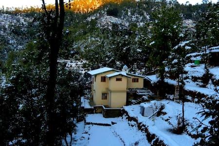 Kafalia -- a retreat amidst nature. - Nainital