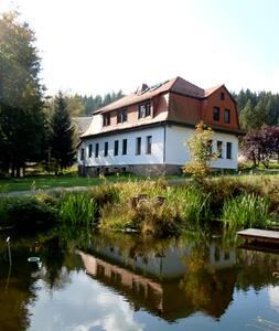 Ferienhaus Ratsmühle Thür. Wald - Möhrenbach - Hus