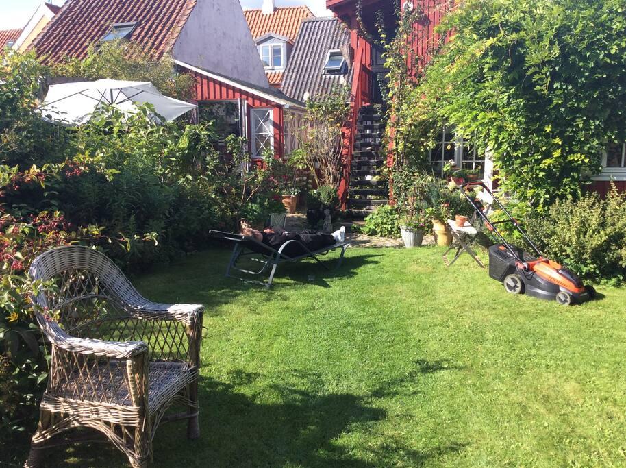 Haven med udsigt til lejligheden oppe.