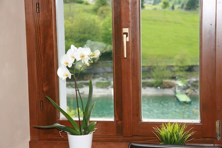 Appartamento sul Lago di Molveno - Molveno - Apartment