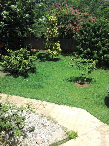 landscaped area in back garden