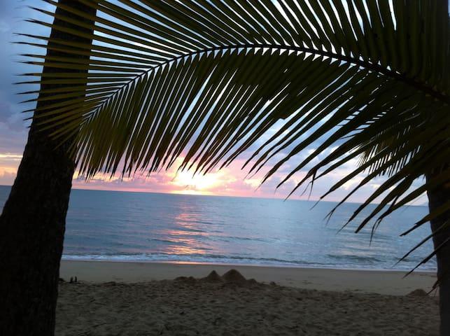 Palm Cove Beach 100m away