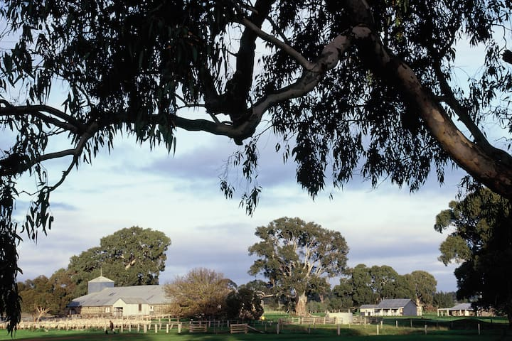 The 1864 shearing shed and Stoneycroft Cottages and the Shearers Quarters.