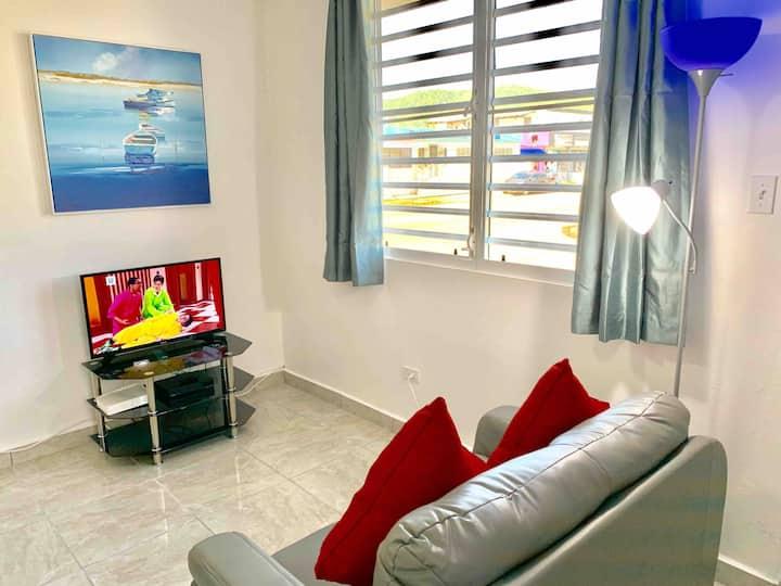 5- Fully Remodeled 15minutes San Juan Metropolitan