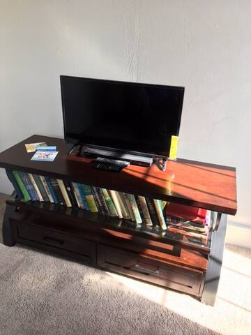 40 inch Smart TV with broadcast and streaming. Netflix etc. Library, DVD Player.
