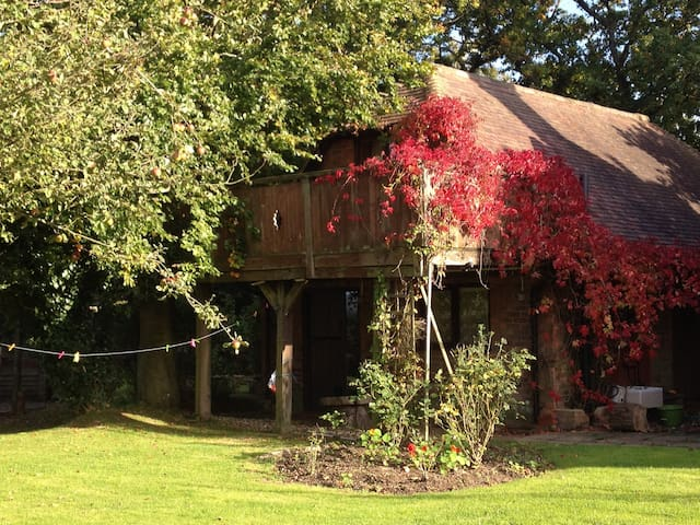 Treetops -  romantic studio apartment/treehouse - Herstmonceux - Flat