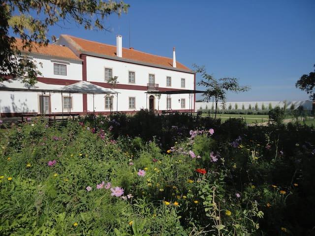 Quinta das Palmeiras - Turismo Rural