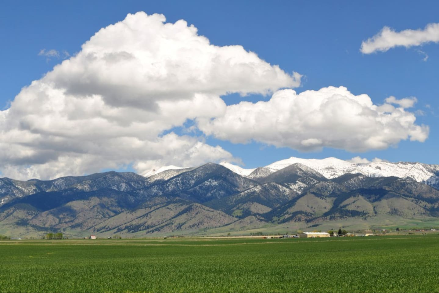 Bridger Mountains view from the back!