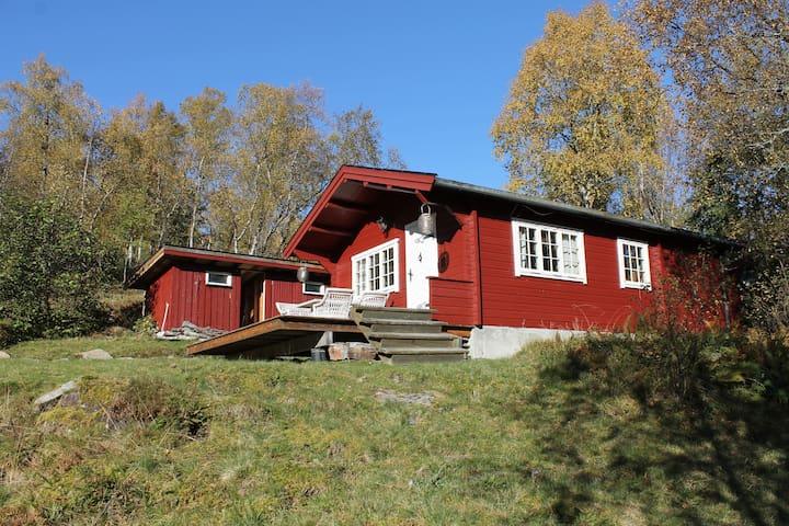Hytte på Fjellsetra, Sykkylven - Sykkylven - Cabin