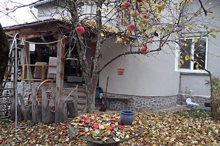Домик у Озера - Mriya - House