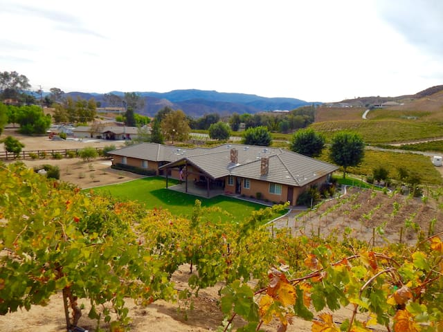 Walking Distance to Leoness Winery & more!