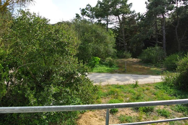 Studio @ 300m from the beach view pine forest