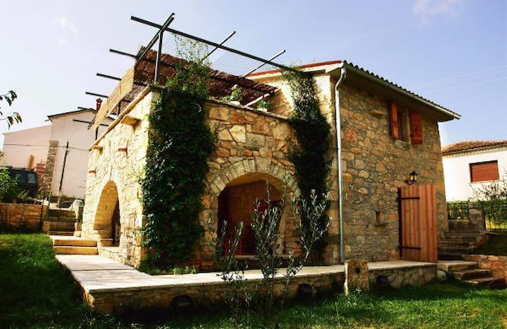 Villa Oliva in the heart of Istria - Motovun - Villa