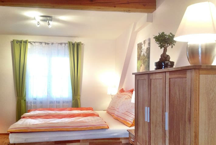 Apartment - 15 minutes from Graz - Fernitz bei Graz - Apartment