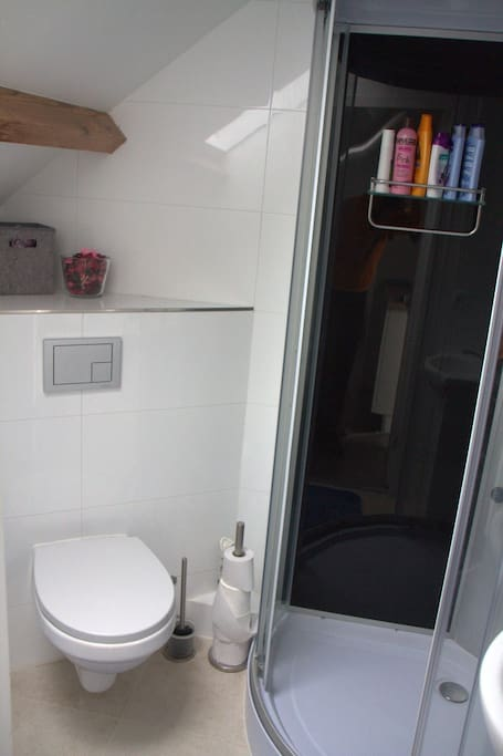 Toilet and shower shown together