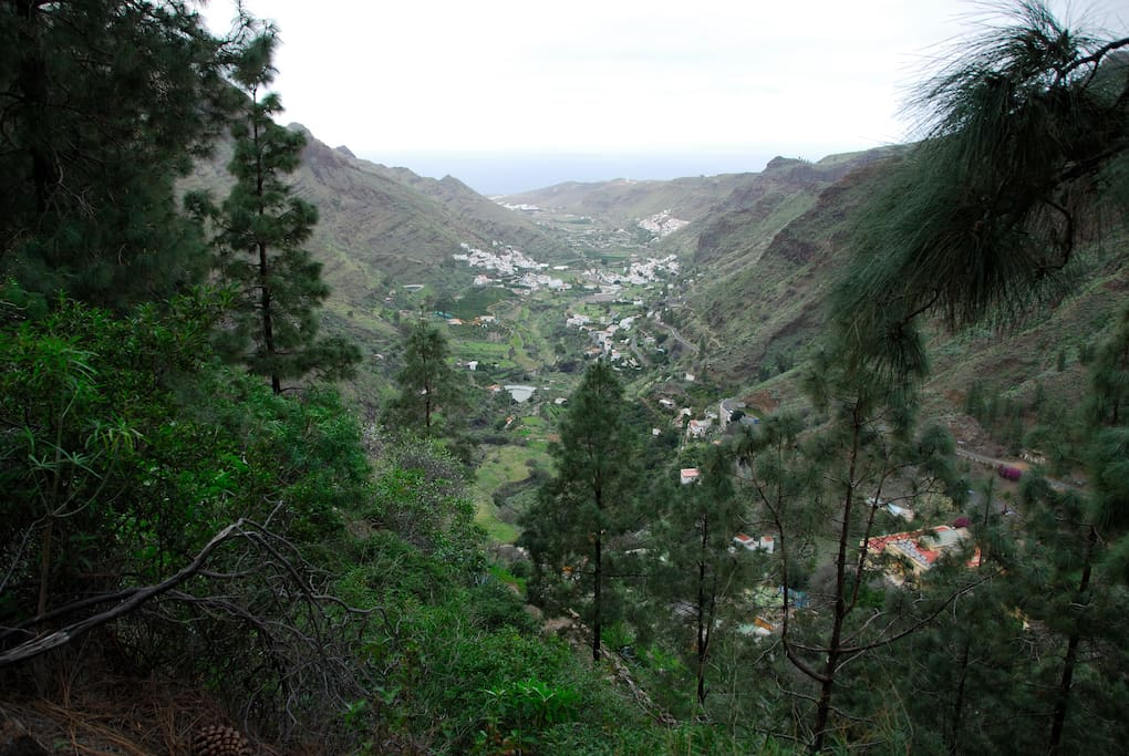 House in the village of agaete houses for rent in agaete - Houses in gran canaria ...