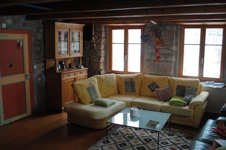 Jolie maison isolée et rustique - Urbeis