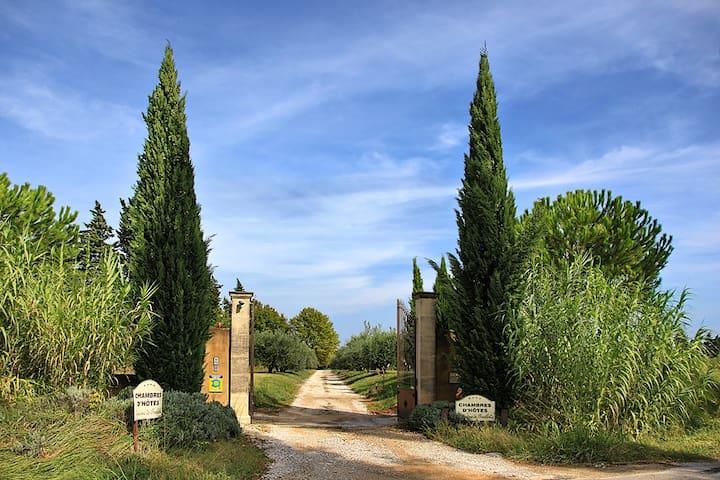 Le Domaine de Fontbelle, Maison d'hôtes de Charme - Graveson