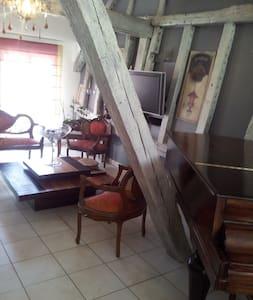 Appartement centre ville Provins - Provins - アパート