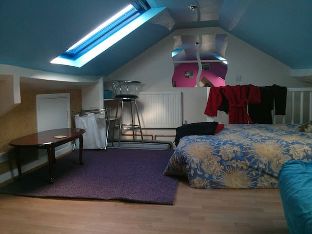 Attic room, large airy space - newton abbot