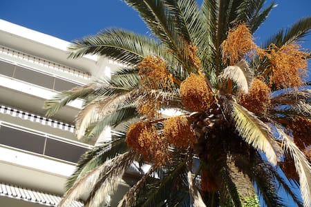 Appartement T3 Cannes PALM BEACH