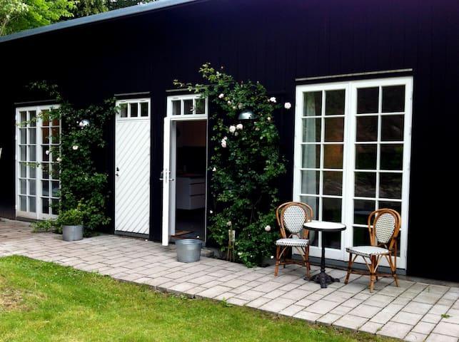 Modern Separate House
