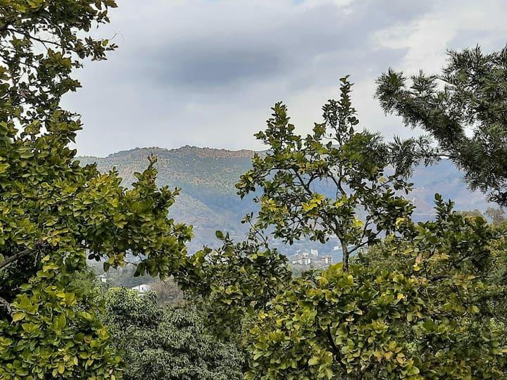 Malsi Hill View