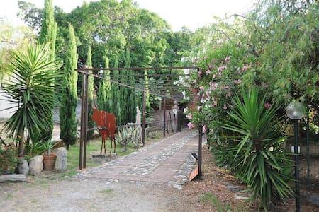 Cottage 3 in the Borgo Fontanelle  - San Filippo del Mela